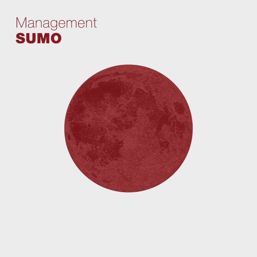 Sumo, il nuovo album dei Management 1