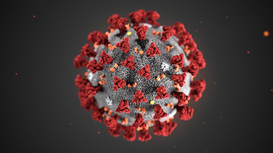 Coronavirus, le epidemie raccontate da cinema e Serie TV 1