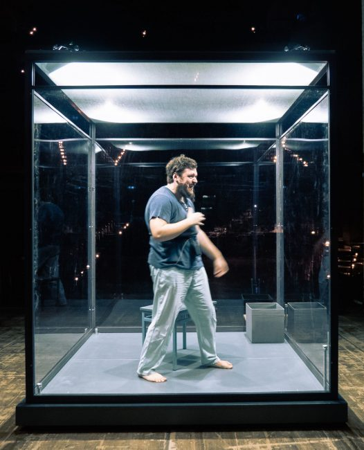 L'attore nella casa di cristallo