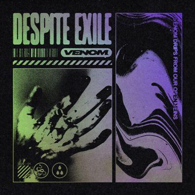 """""""Incinerate"""" nuovo singolo per i Despite Exile 1"""