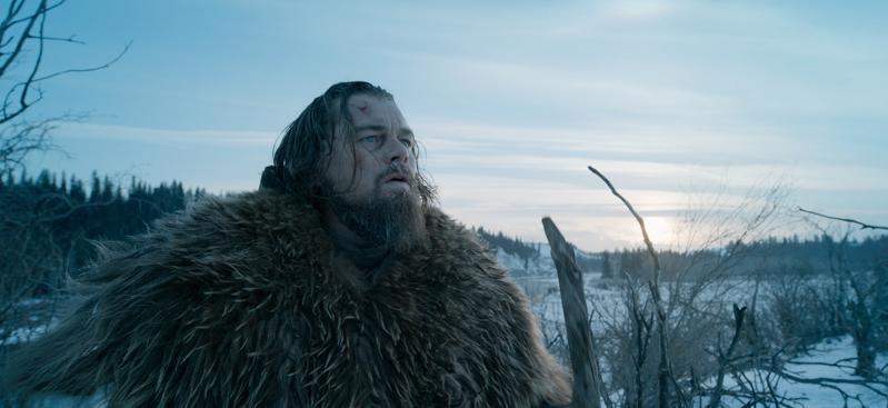 Leonardo DiCaprio – l'attore straordinario festeggia 46 anni 2