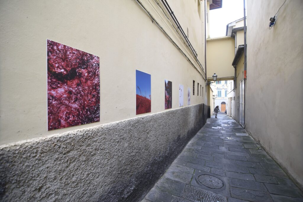 Da Paestum a Prato: salviamo il patrimonio culturale 3