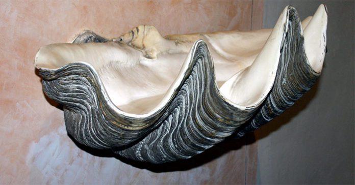 Gli euro raccontano: La conchiglia, il mare, la rosa, ovvero i simboli di Venere e Maria. 2