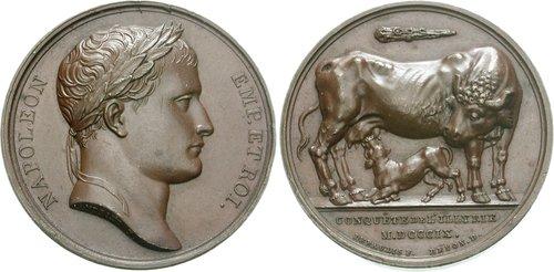 Napoleone Bonaparte (1769-1821): la sua mania per la raffigurazione e i falsi miti legati alla sua immagine 5